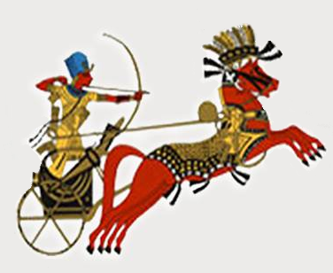 مصر ترافيل